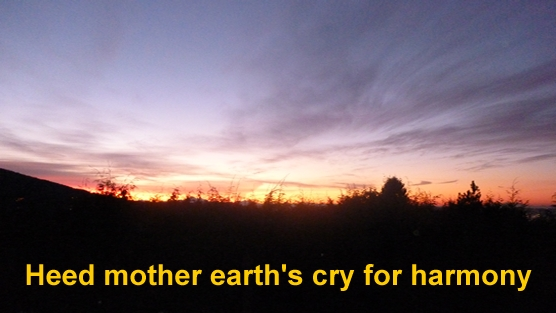 heed_mother_earths_cry_for_harmony_1